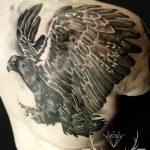 orzel realizm, galeria tatuazu sanok
